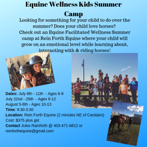 Equine Wellness Kids Summer Camp-5