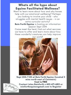 Whats all the hype about Equine Facilitated Wellness?